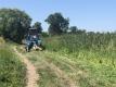 Покос травы на территории города Калининграда ведется в ежедневном режиме.