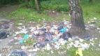 МБУ «Чистота» ликвидирует несанкционированные свалки