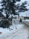 Калининградская погода порадовала настоящей зимой.